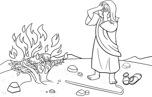 bible-2153968_1280